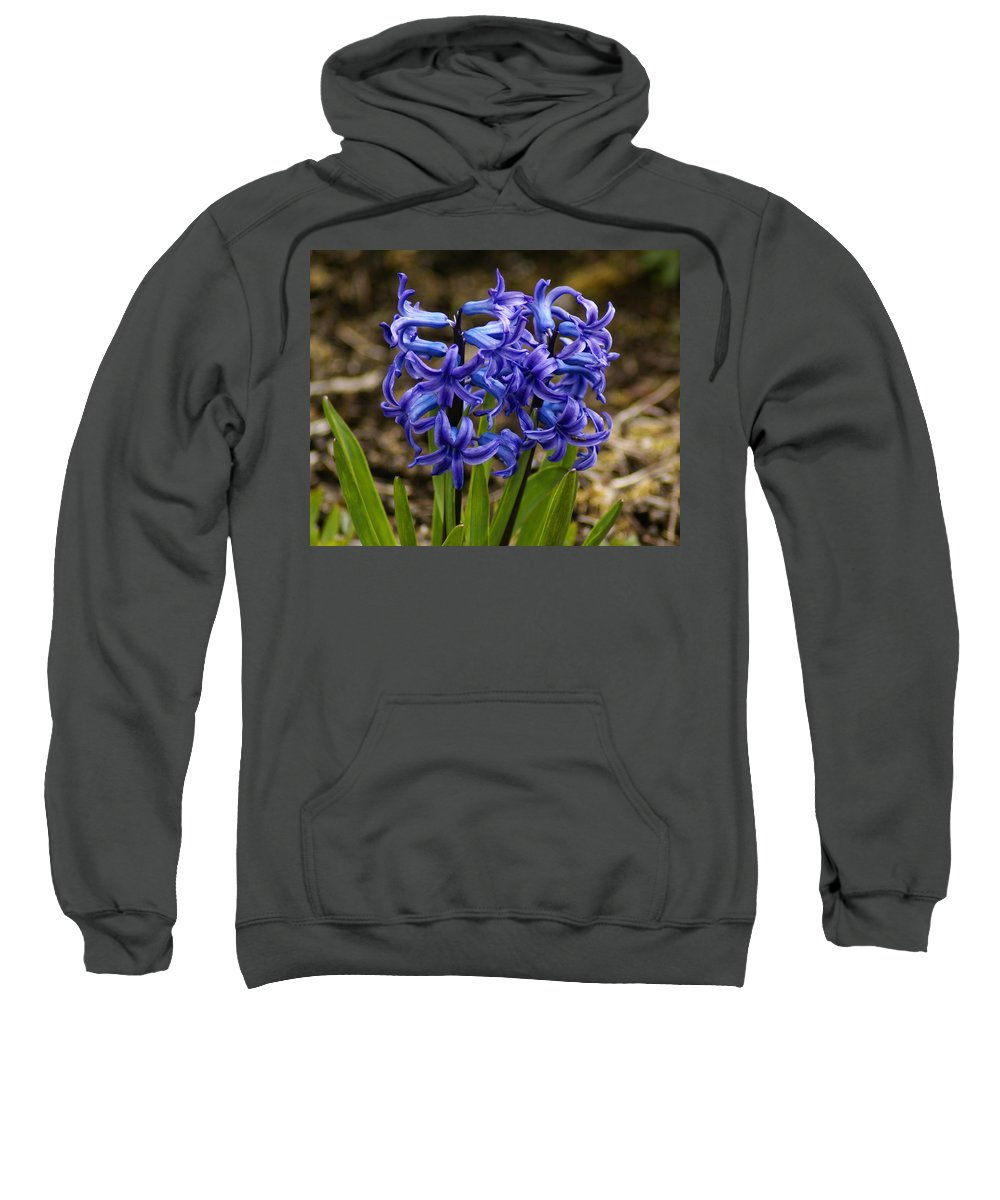 Flowers Sweatshirt featuring the photograph A Gathering Of Blues by Ben Upham III