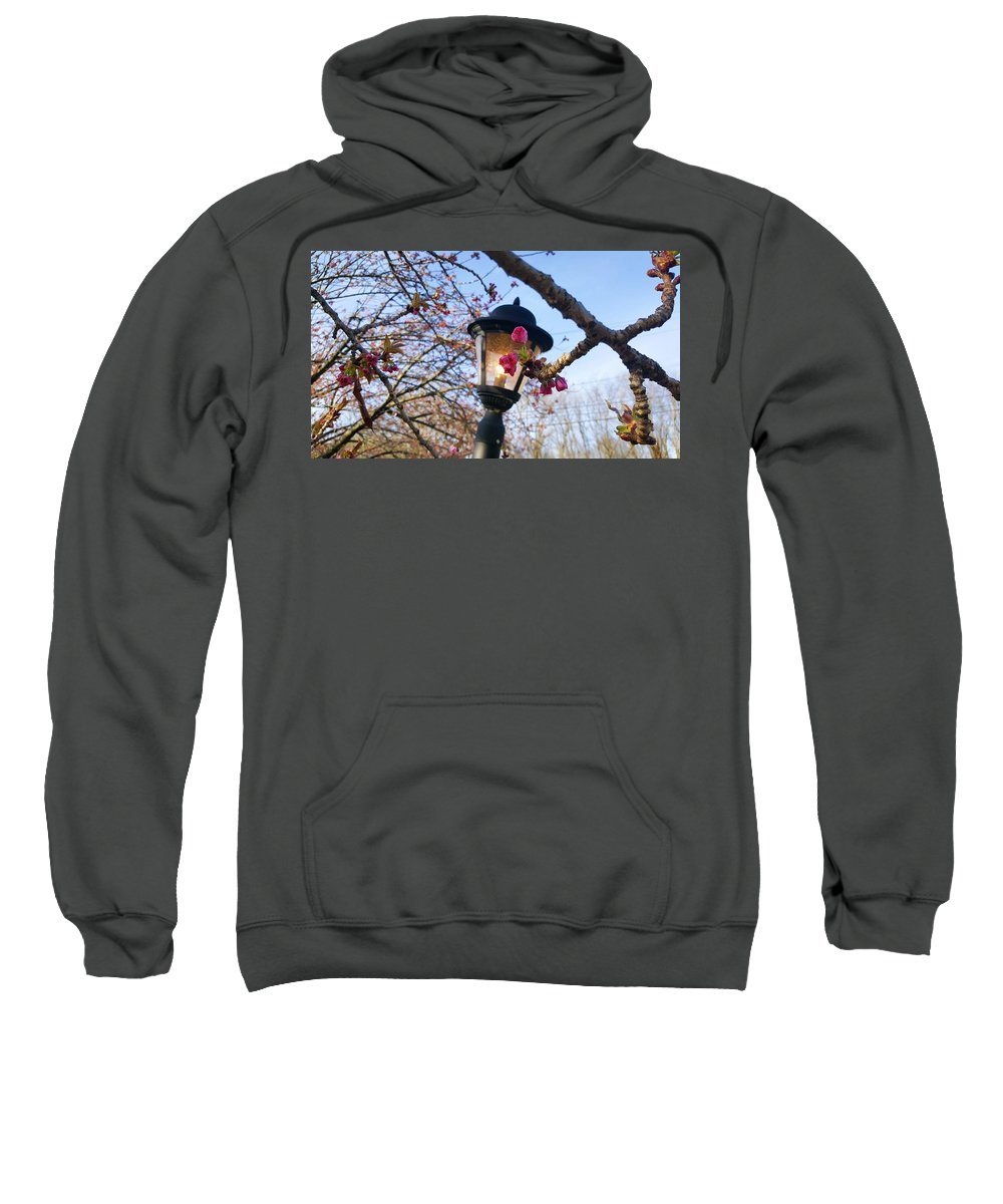 Spring Sweatshirt featuring the photograph A Glance Of Spring by Jessica T Hamilton