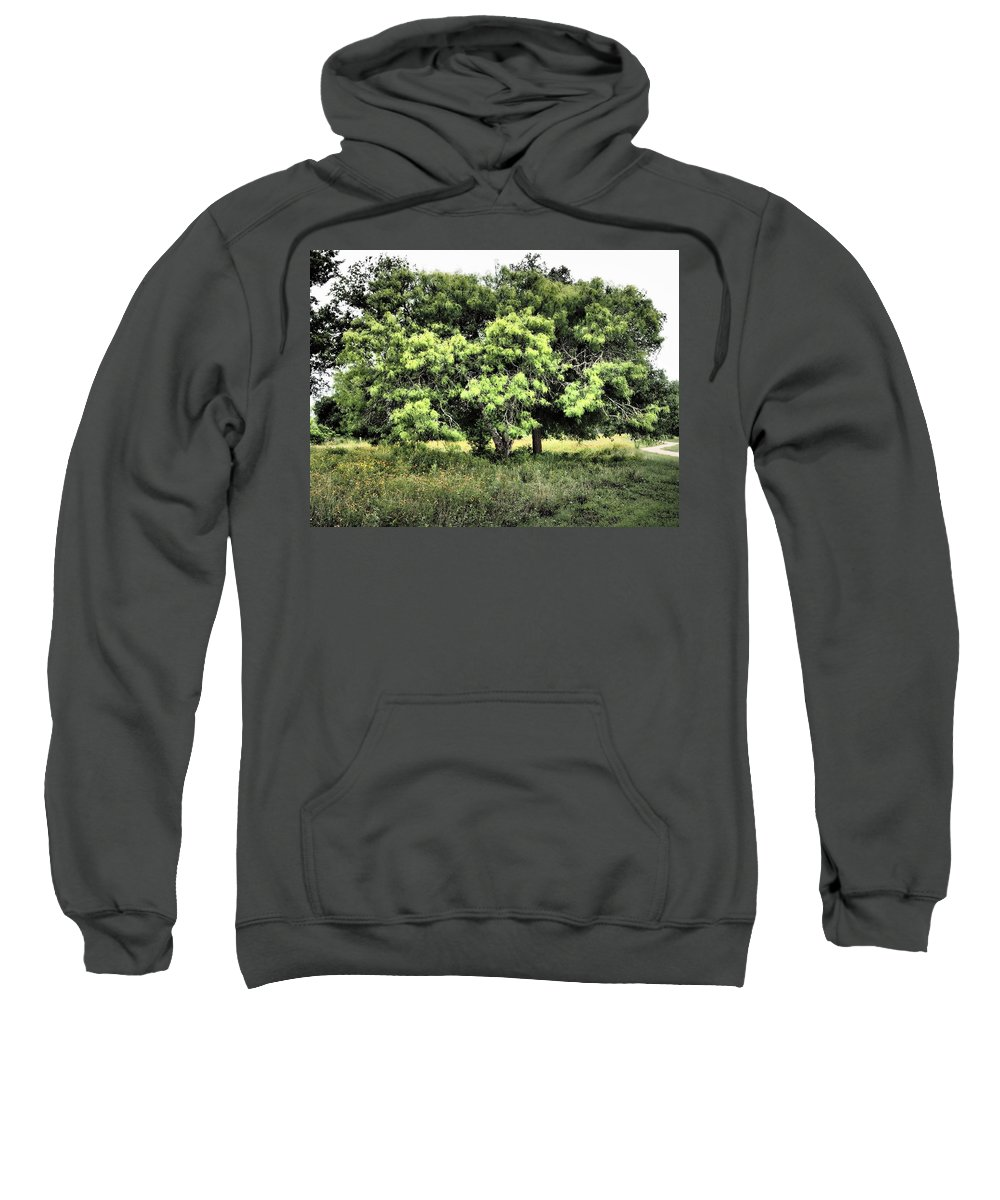 Glimpse Sweatshirt featuring the photograph A Glimpse Of Nature by Gary Richards