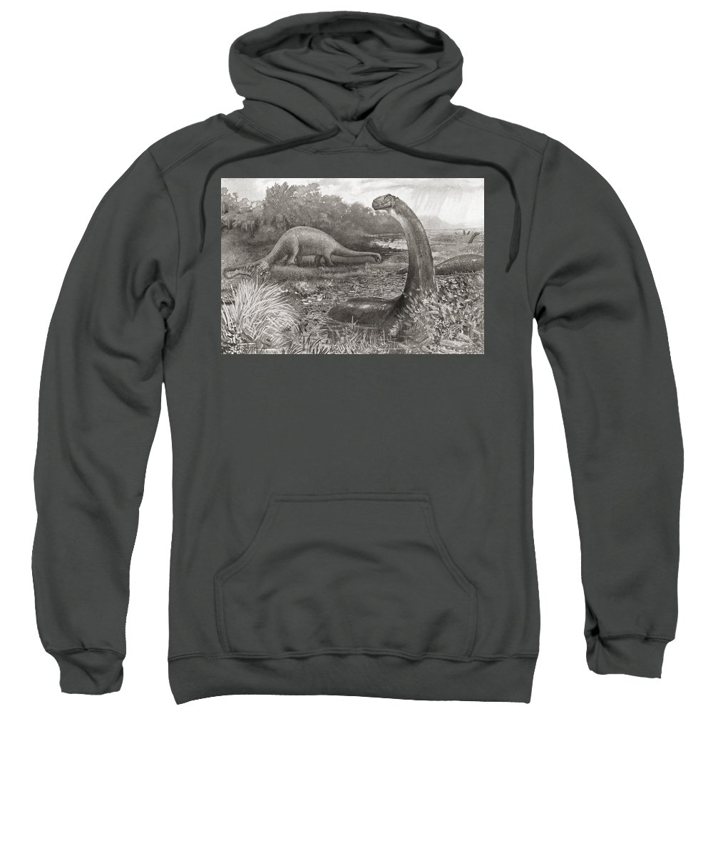 Group Sweatshirt featuring the photograph A Group Of Brontosaurs, Or Thunder by Ken Welsh