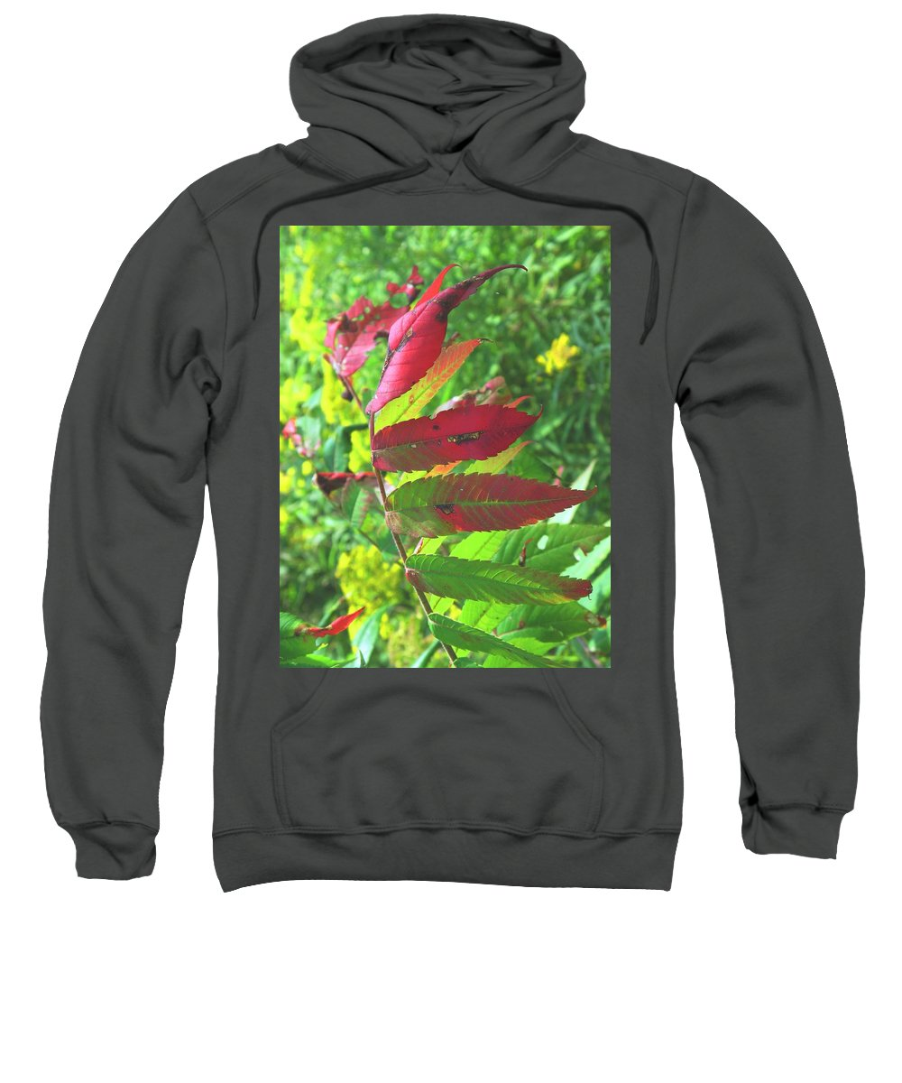 Leaves Sweatshirt featuring the photograph A Hard Tough Summer by Ian MacDonald
