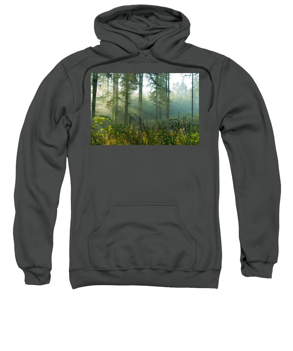 Nature Sweatshirt featuring the photograph A New Day Has Come by Daniel Csoka