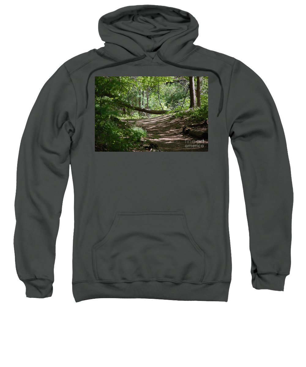 Landscape Sweatshirt featuring the photograph A Path In The Woods by David Lane