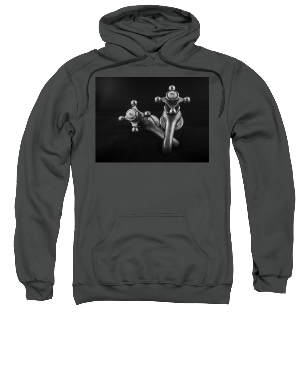 Antique Sweatshirt featuring the photograph A Relationship Of Sorts by Michele James