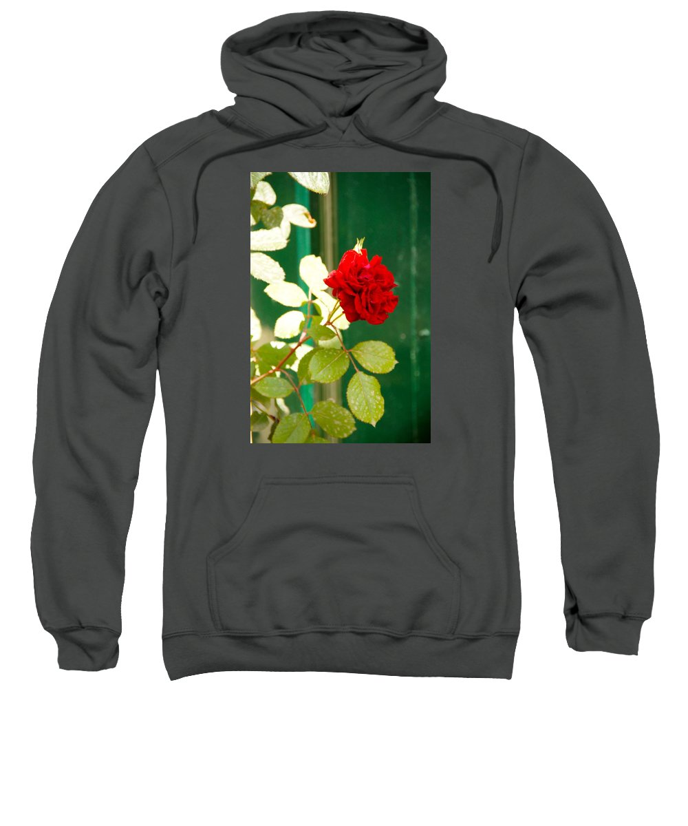 Flower Sweatshirt featuring the photograph A Rose Is A Rose by Ron Koivisto