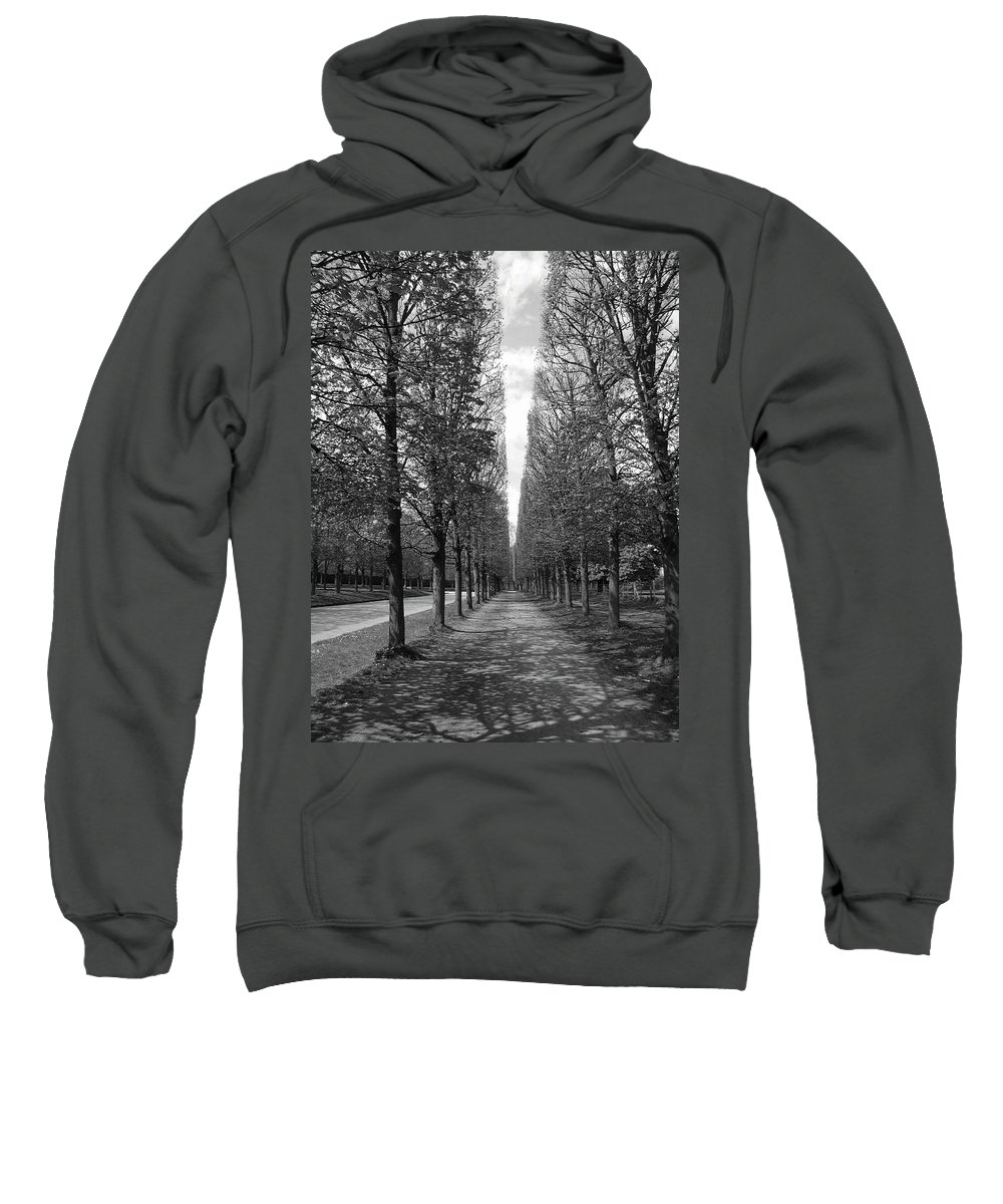 Trees Sweatshirt featuring the photograph A Slice Of The Sky by Tom Reynen