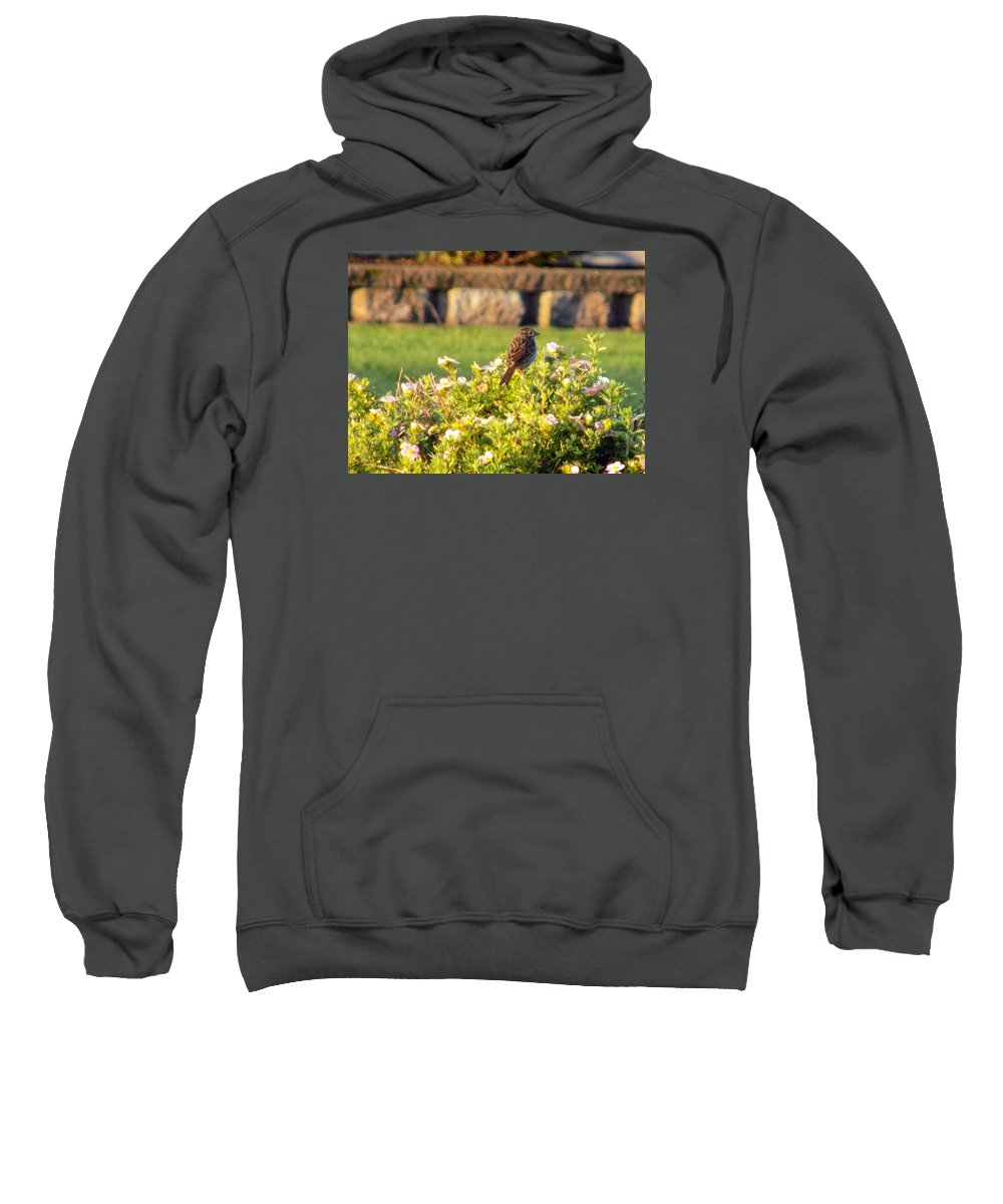 Sparrow Sweatshirt featuring the photograph A Sparrow Surveys by William Tasker