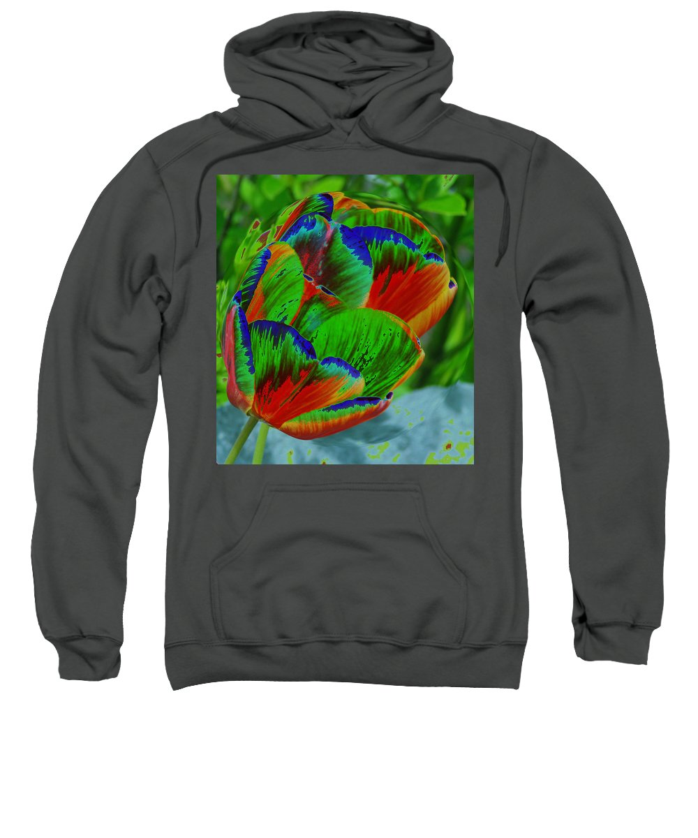 Flowers Sweatshirt featuring the photograph A Stained Tullip  by Jeff Swan