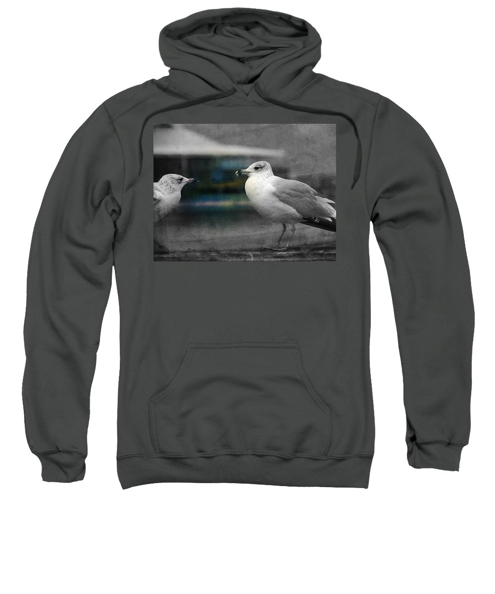 Two Seagulls Sweatshirt featuring the photograph A Touch Of Blue by Susanne Van Hulst