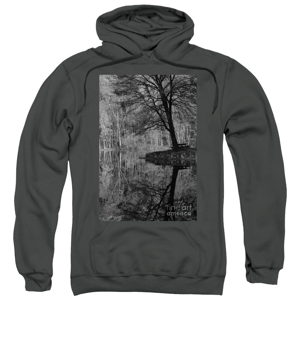 Tree Sweatshirt featuring the photograph A Tree Of A Different Color by Karol Livote