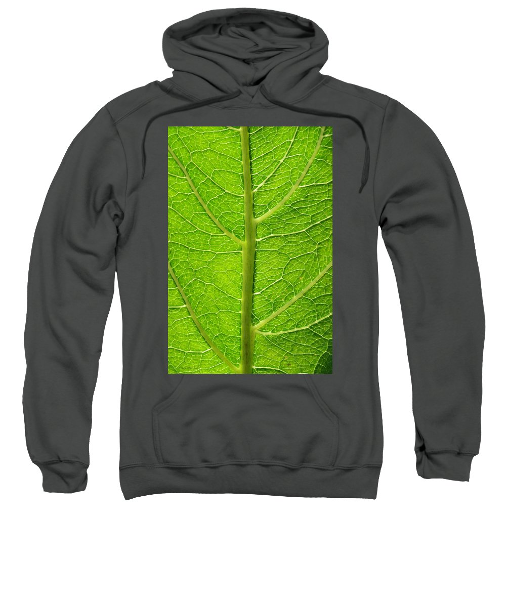 Leaf Sweatshirt featuring the photograph A Tree Within by Donna Blackhall