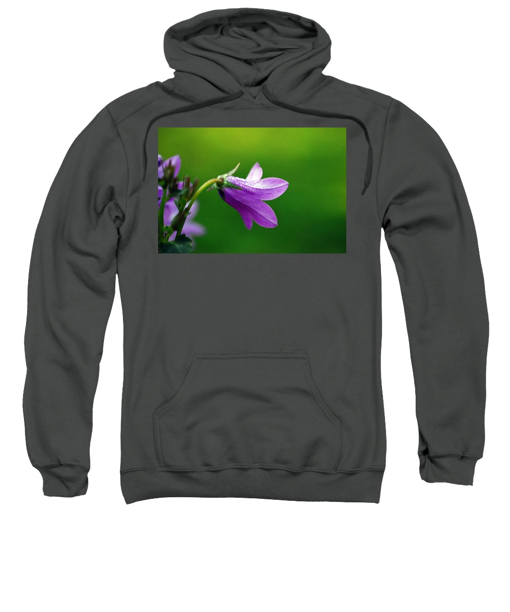 Flower Sweatshirt featuring the photograph A View From Behind by Lori Tambakis