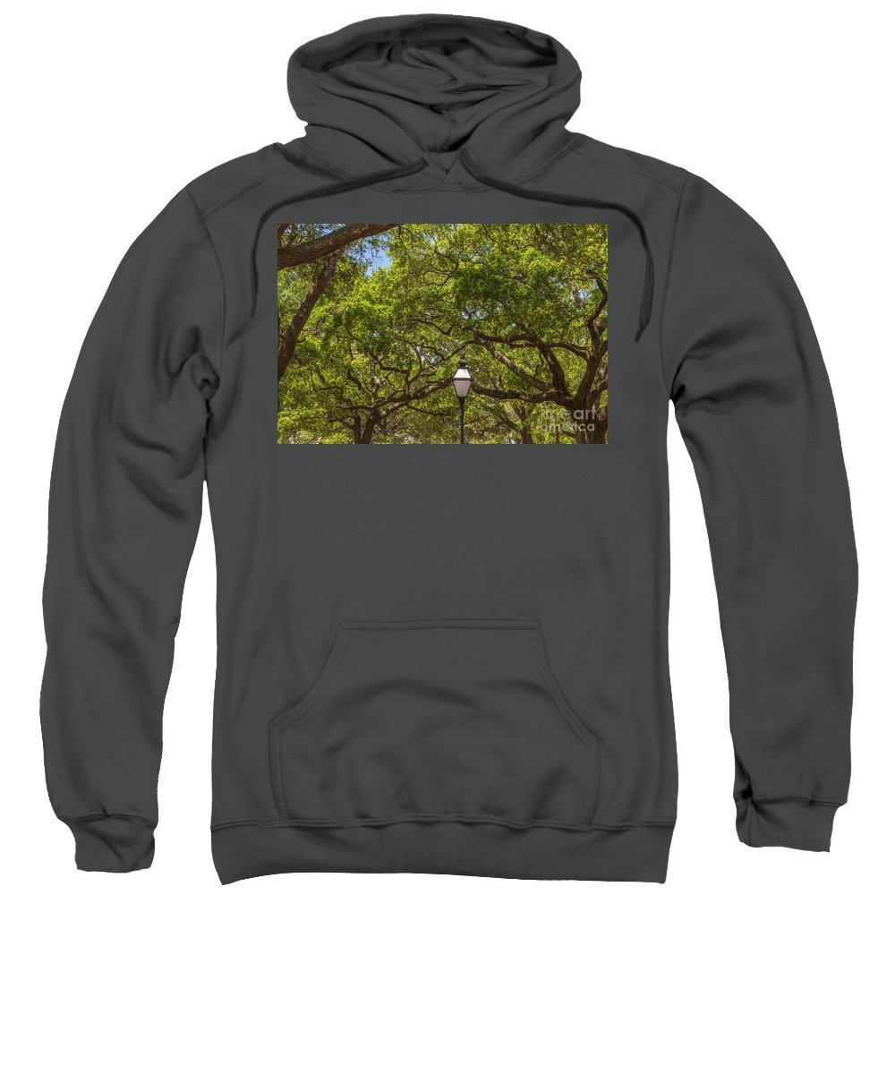 White Point Garden Sweatshirt featuring the photograph A Walk In The Park by Dale Powell