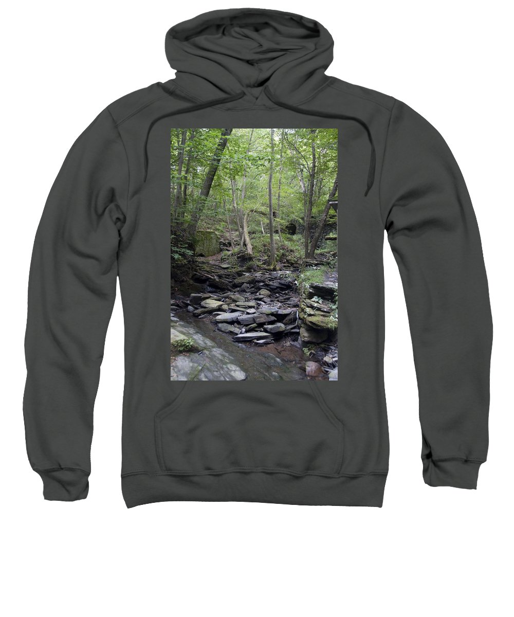 Woods Sweatshirt featuring the photograph A Walk In The Woods by Steven Natanson