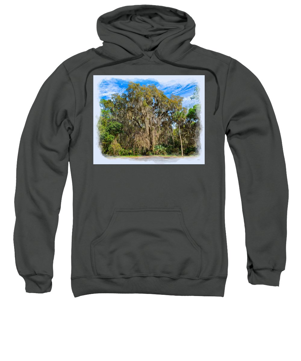 Bailey Sweatshirt featuring the photograph A Well Dressed Oak by John M Bailey