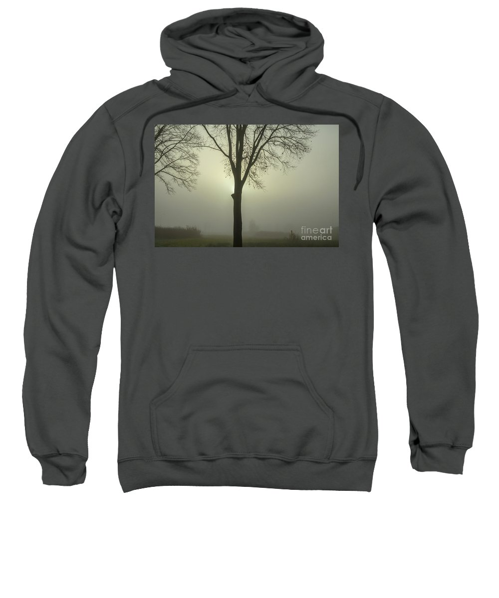 Tree Sweatshirt featuring the photograph A Winter's Day In The Fog by Patricia Hofmeester