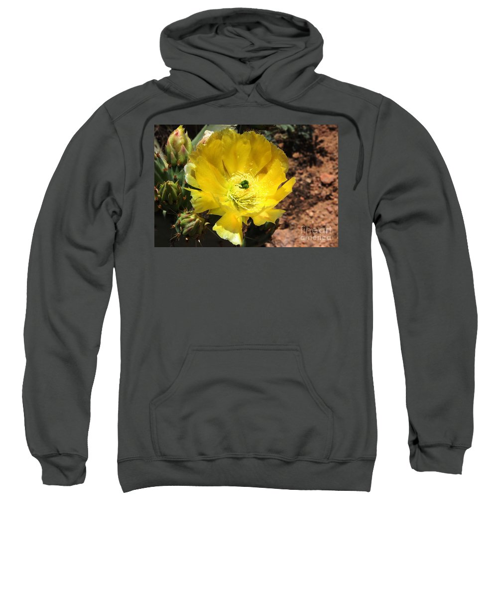 Yellow Sweatshirt featuring the photograph A Yellow Cactus Blossom by Natalie Ortiz