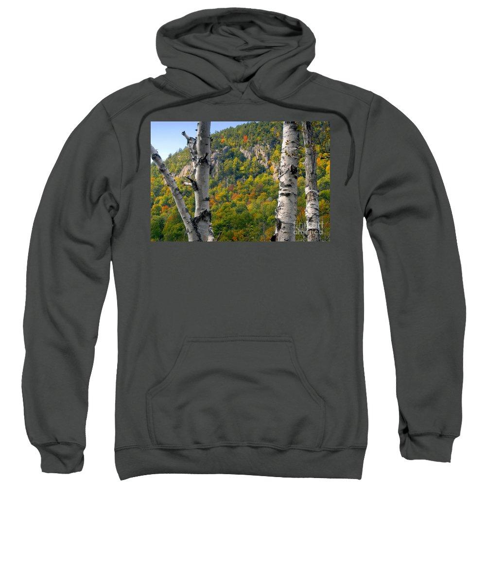Adirondack Mountains New York Sweatshirt featuring the photograph Adirondack Mountains New York by David Lee Thompson