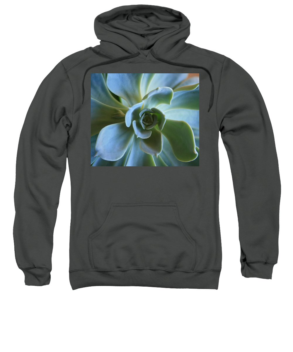 Aeonium Sweatshirt featuring the photograph Aeonium by Marna Edwards Flavell