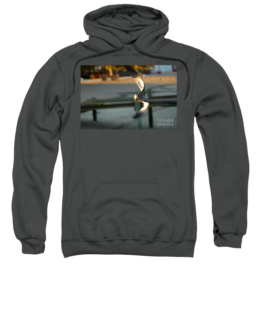 Clay Sweatshirt featuring the photograph Aeronautical Acrobatics by Clayton Bruster