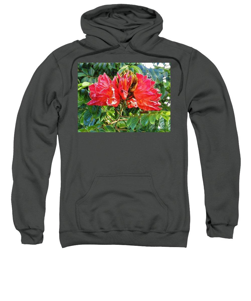 African Tulip Flower Sweatshirt featuring the jewelry African Tulip Flower #2 by Trudee Hunter