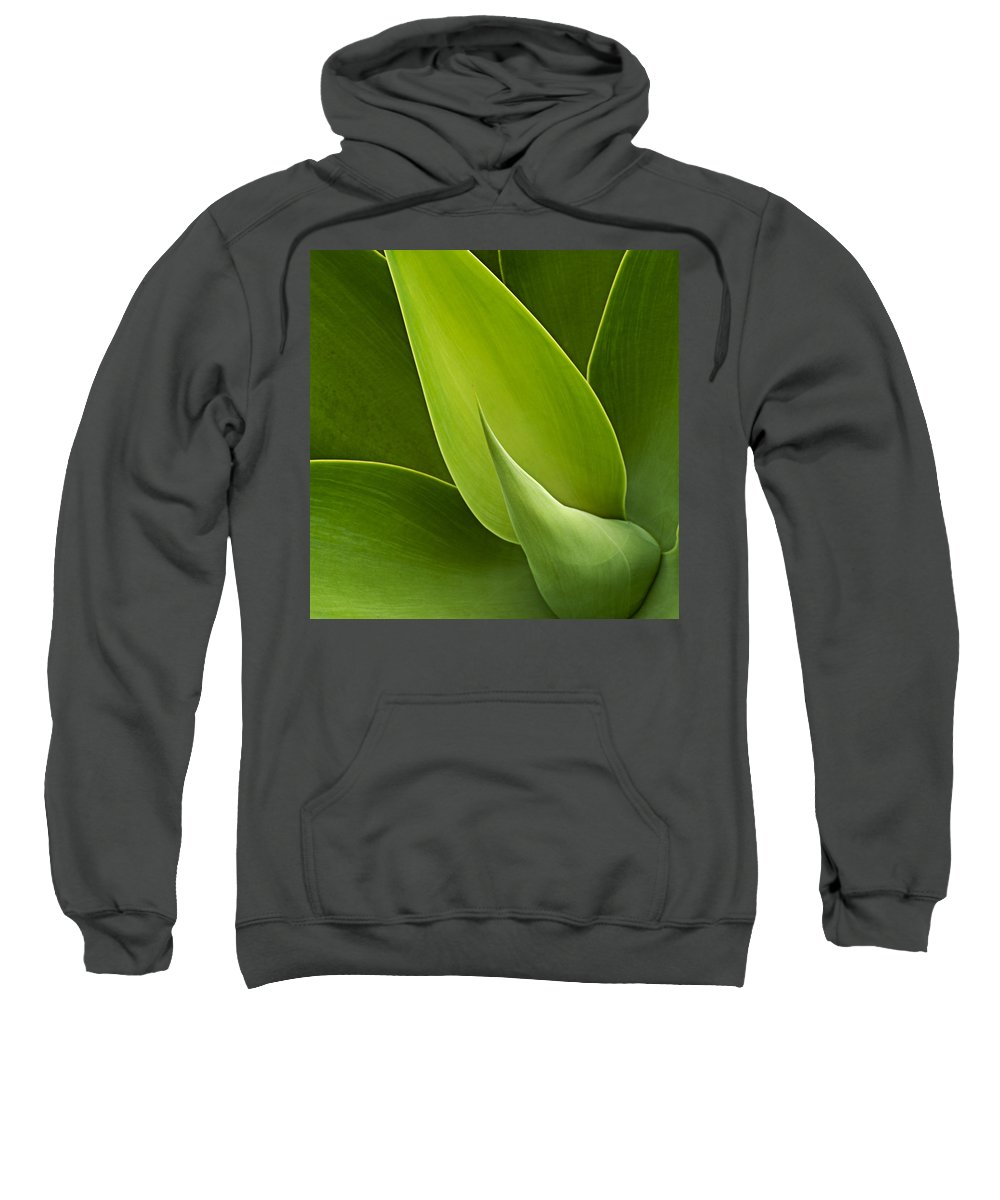 Green Sweatshirt featuring the photograph Agave by Heiko Koehrer-Wagner