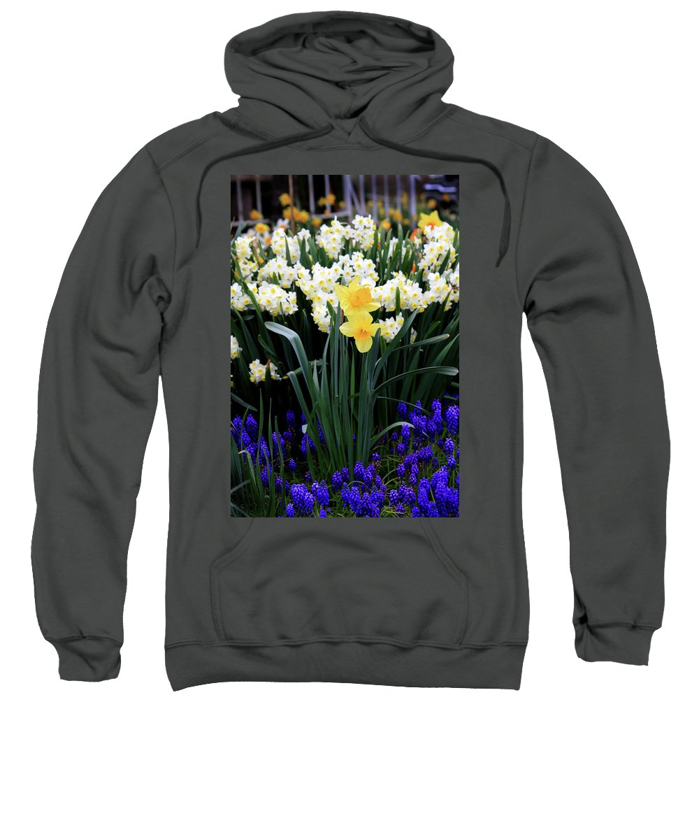 Garden Sweatshirt featuring the photograph Aggie's Garden by Rebecca Renfro