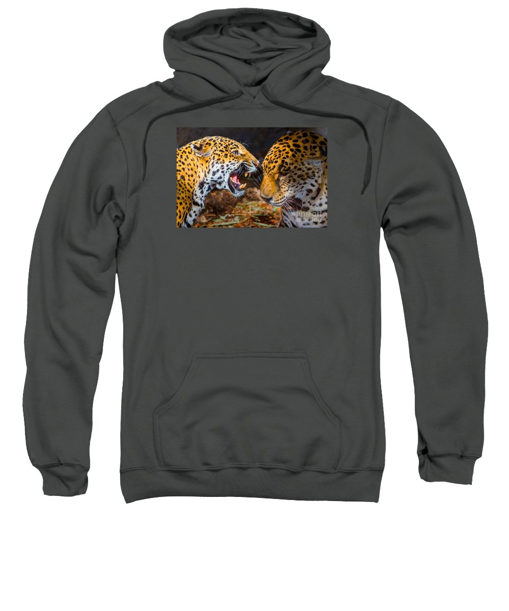 Jaguar Sweatshirt featuring the photograph Aggressive Negotiations by Kimberly Blom-Roemer