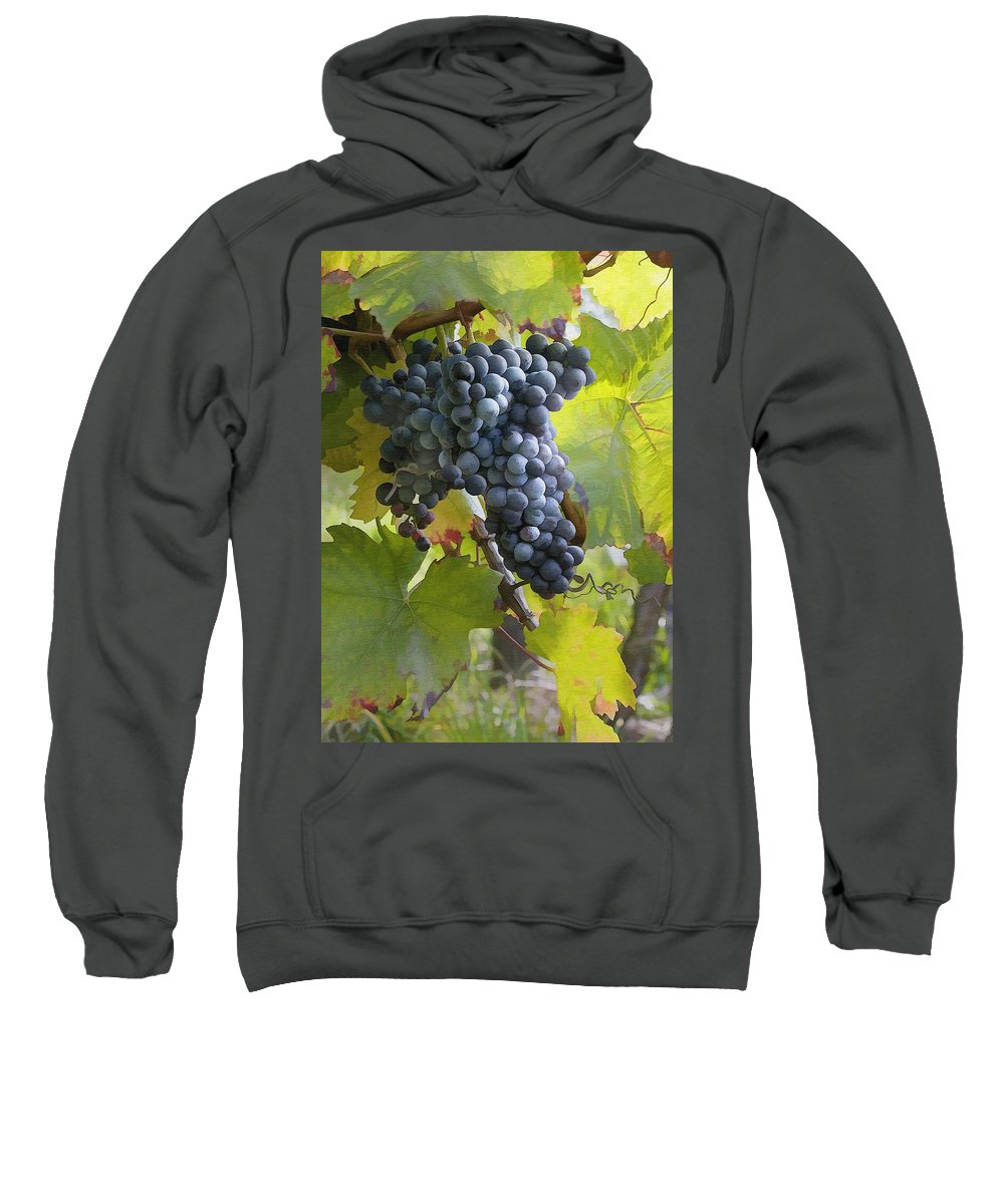Grape Sweatshirt featuring the photograph All Aglow by Sharon Foster
