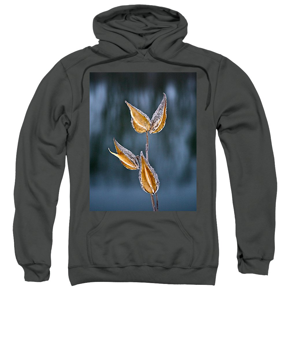 Weed Winter Sweatshirt featuring the photograph All Spent by Robert Pearson