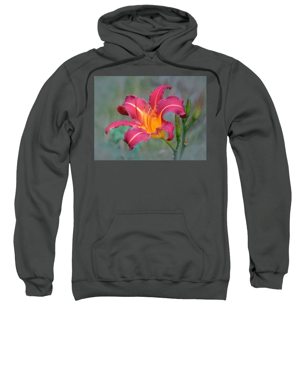 Daylily Sweatshirt featuring the photograph All Summer Lily by MTBobbins Photography