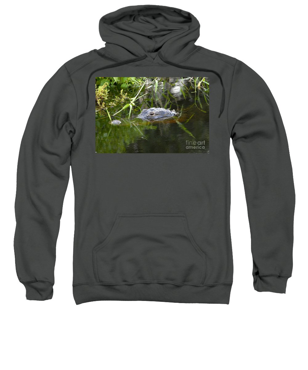Alligator Sweatshirt featuring the photograph Alligator Hunting by David Lee Thompson