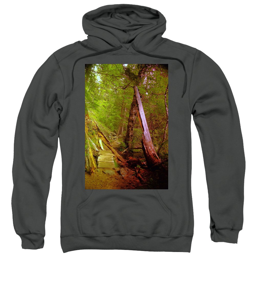 Forest Sweatshirt featuring the photograph Along The Way by Jeff Swan