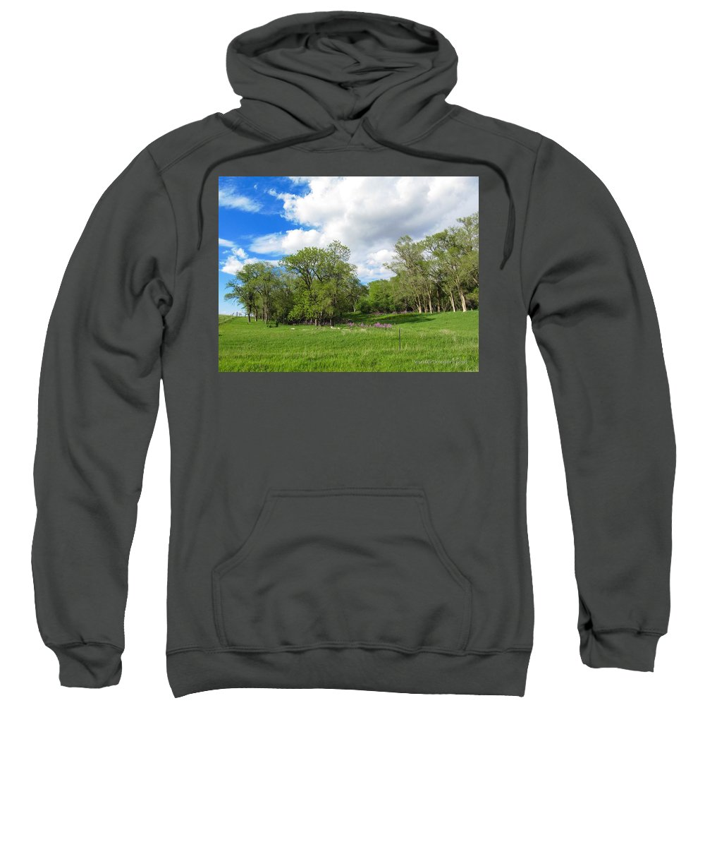 Meadow Sweatshirt featuring the photograph Along The Way by Lisa Phillips