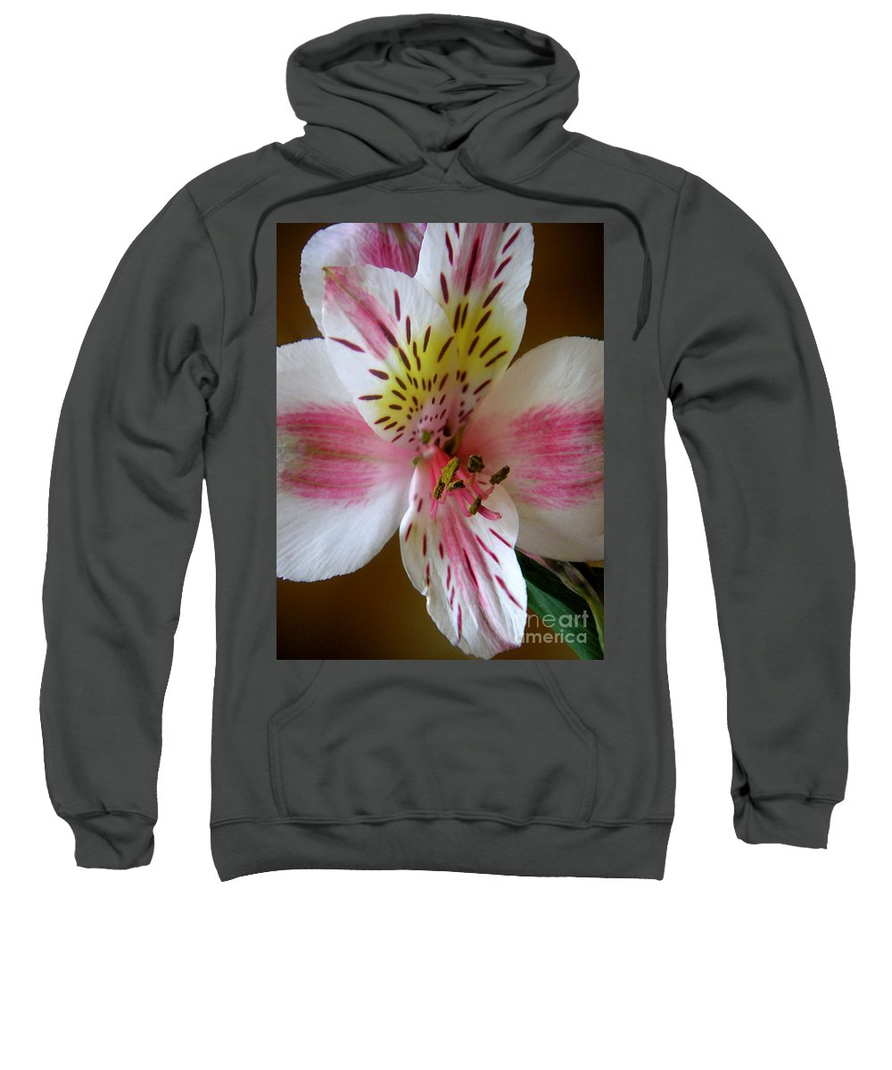 Nature Sweatshirt featuring the photograph Alstroemerias - Close by Lucyna A M Green