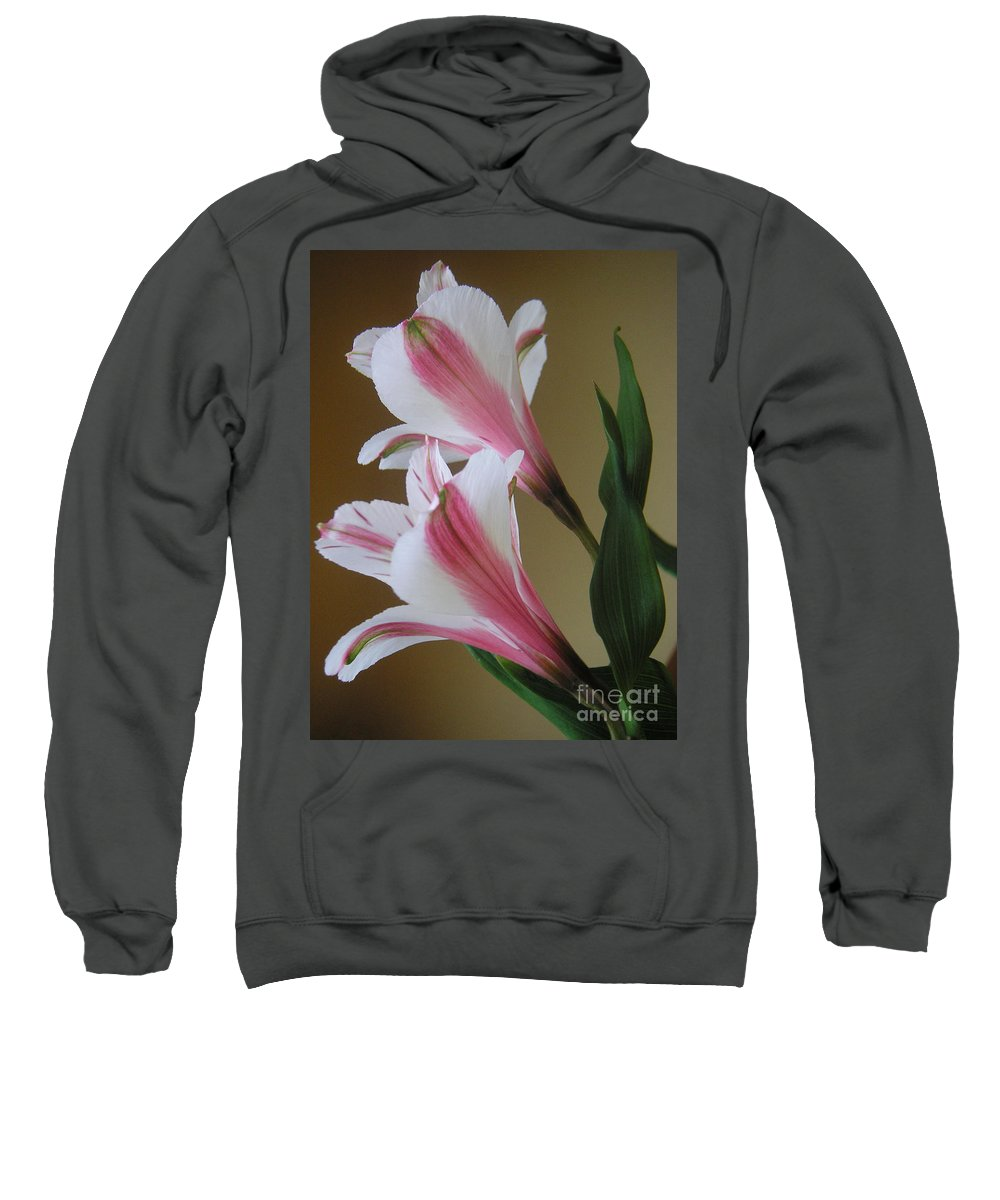 Nature Sweatshirt featuring the photograph Alstroemerias - Doubled by Lucyna A M Green