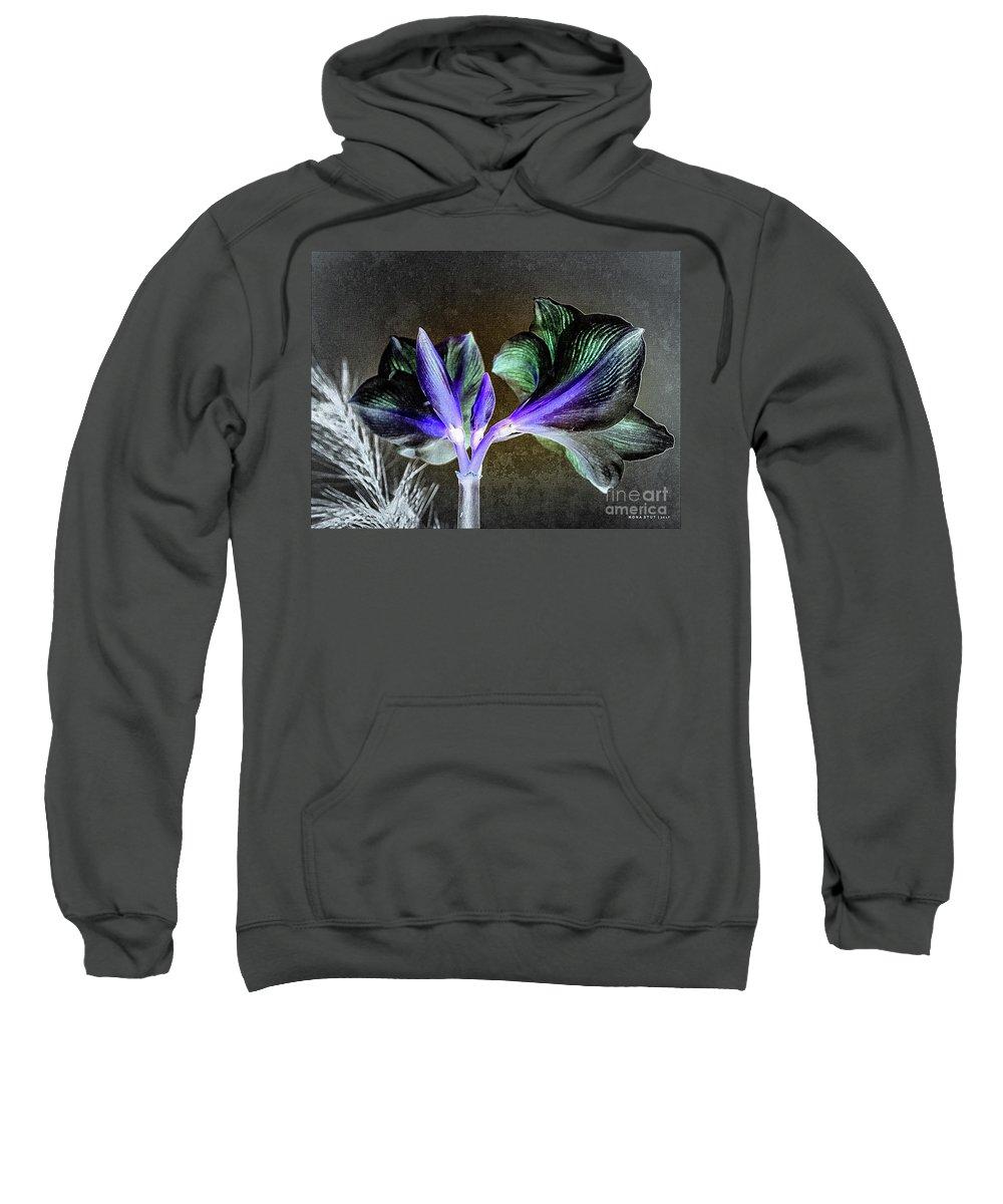 Mona Stut Sweatshirt featuring the mixed media Amaryllis Belladonna Lily Buds by Mona Stut