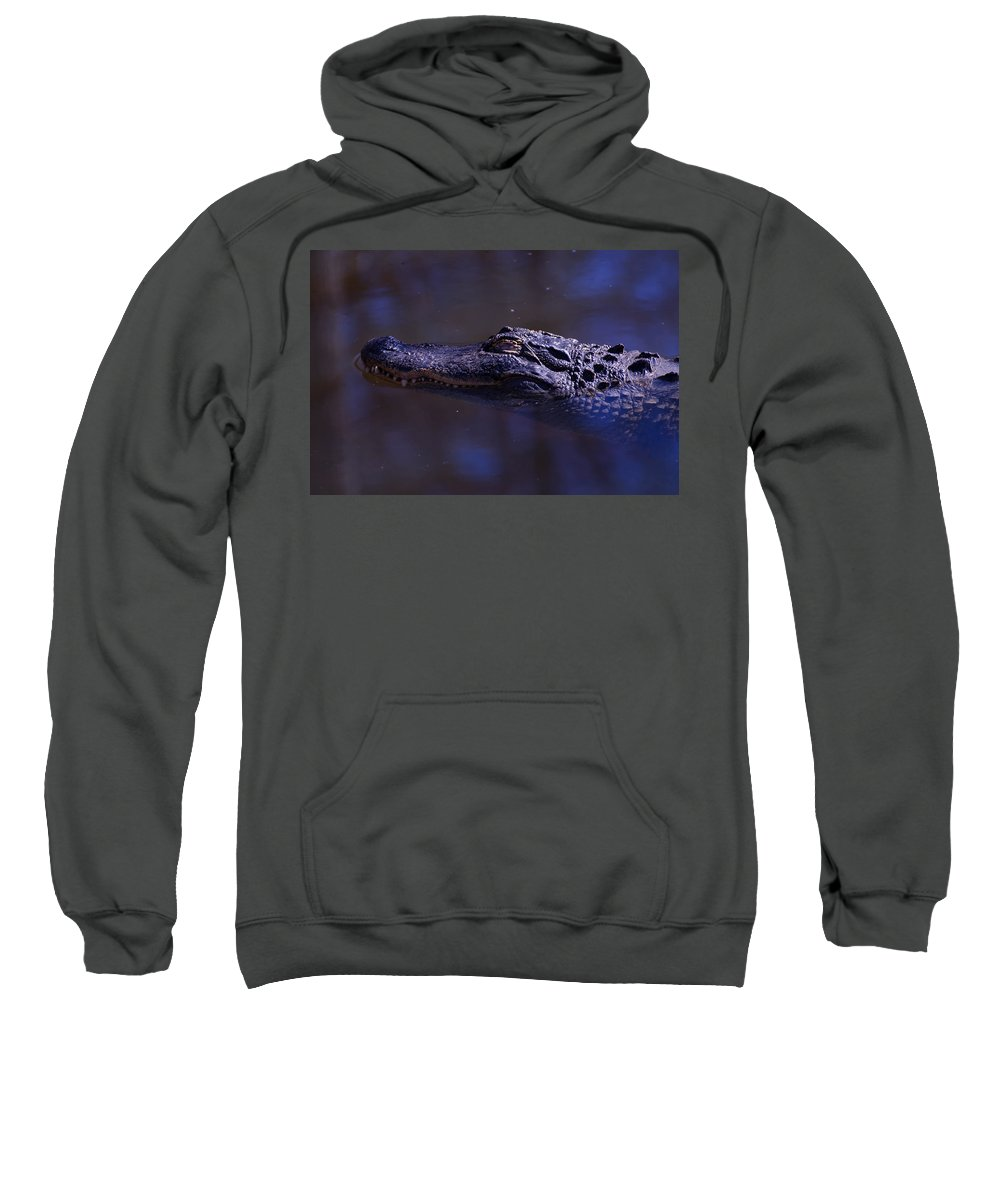 Alligator Mississippiensis Sweatshirt featuring the digital art American Alligator Sleeping by Chris Flees