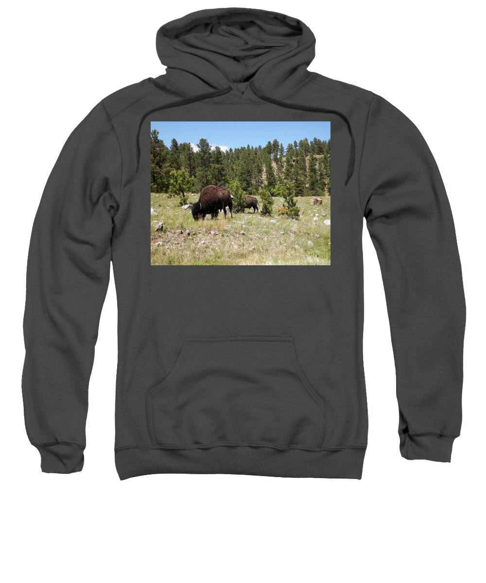 Bison Sweatshirt featuring the photograph American Bison by Pamela Peters