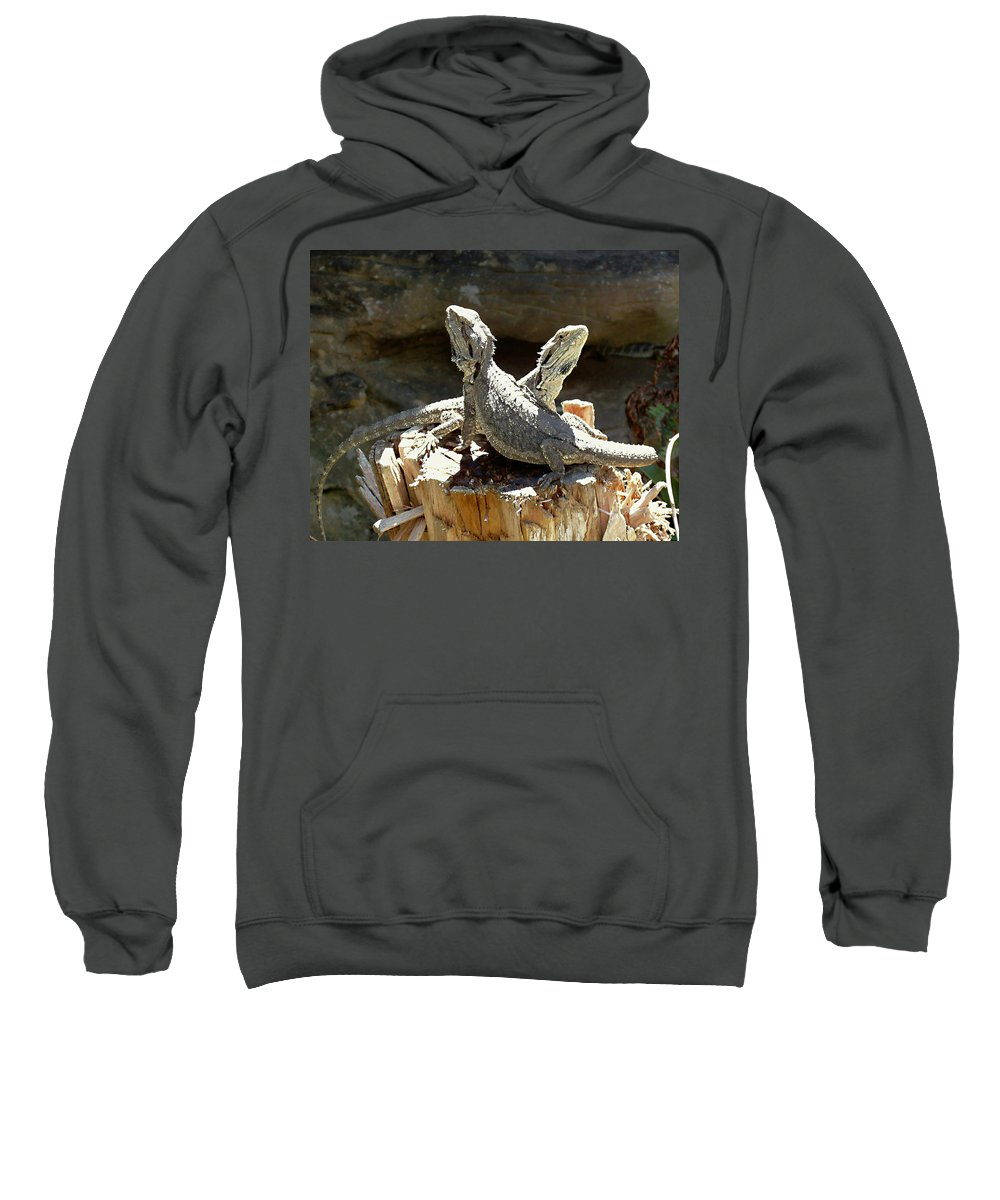 Amphion And Zethus Sweatshirt featuring the photograph Amphion And Zethus by Ellen Henneke