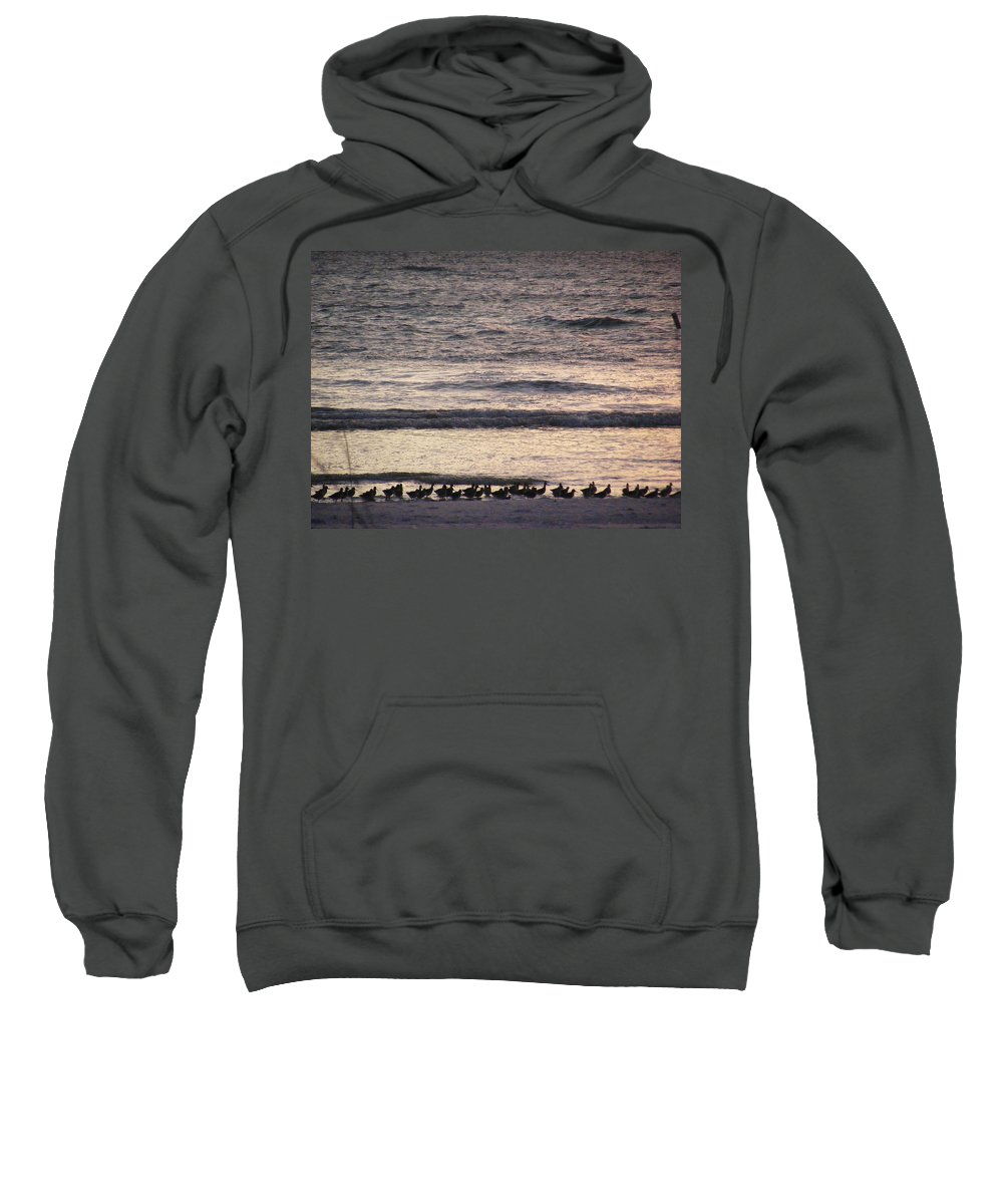 Evening Stroll Sweatshirt featuring the photograph An Evening Stroll by Ed Smith