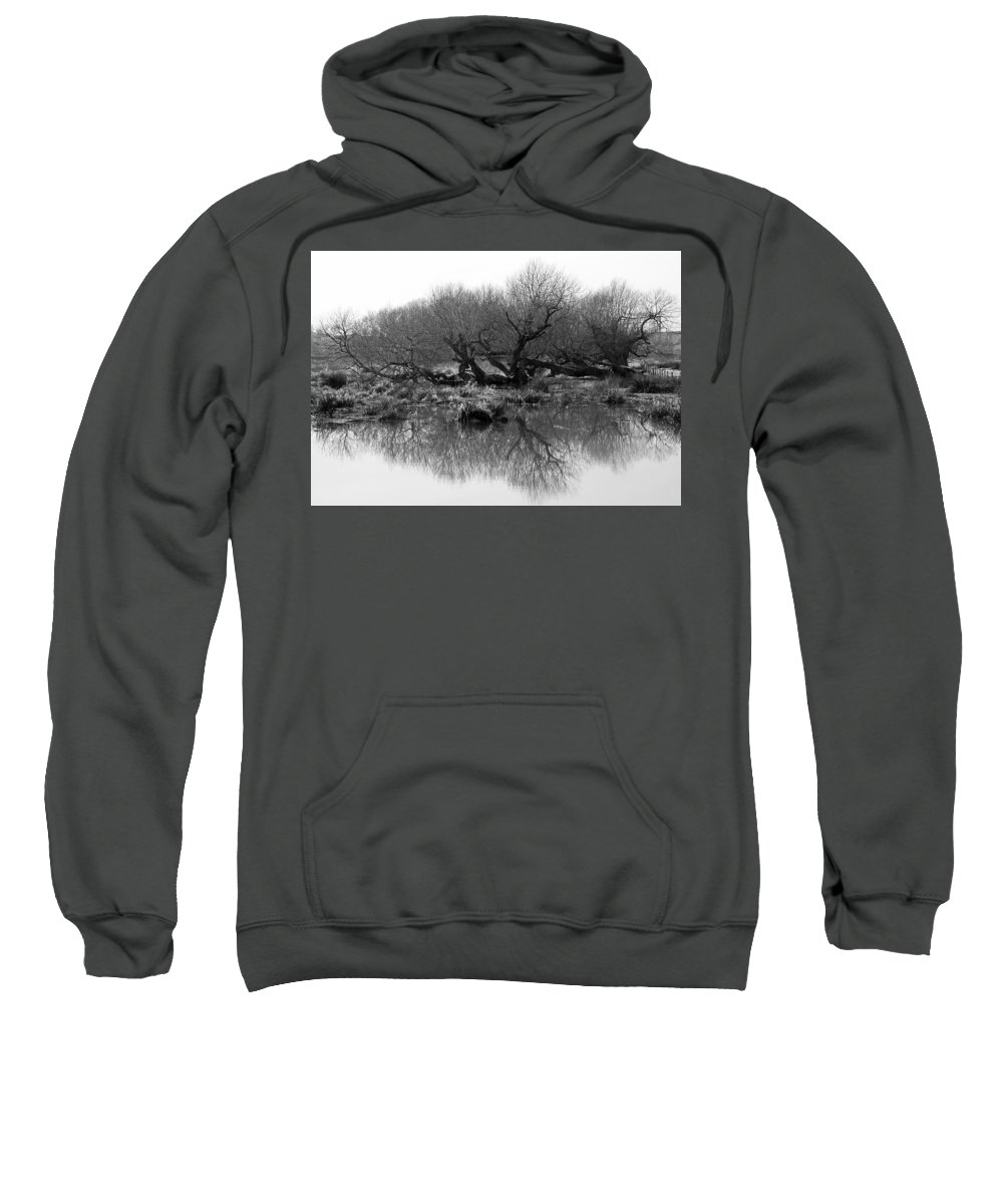 Trees Sweatshirt featuring the photograph Ancient Pollard Trees by Bob Kemp