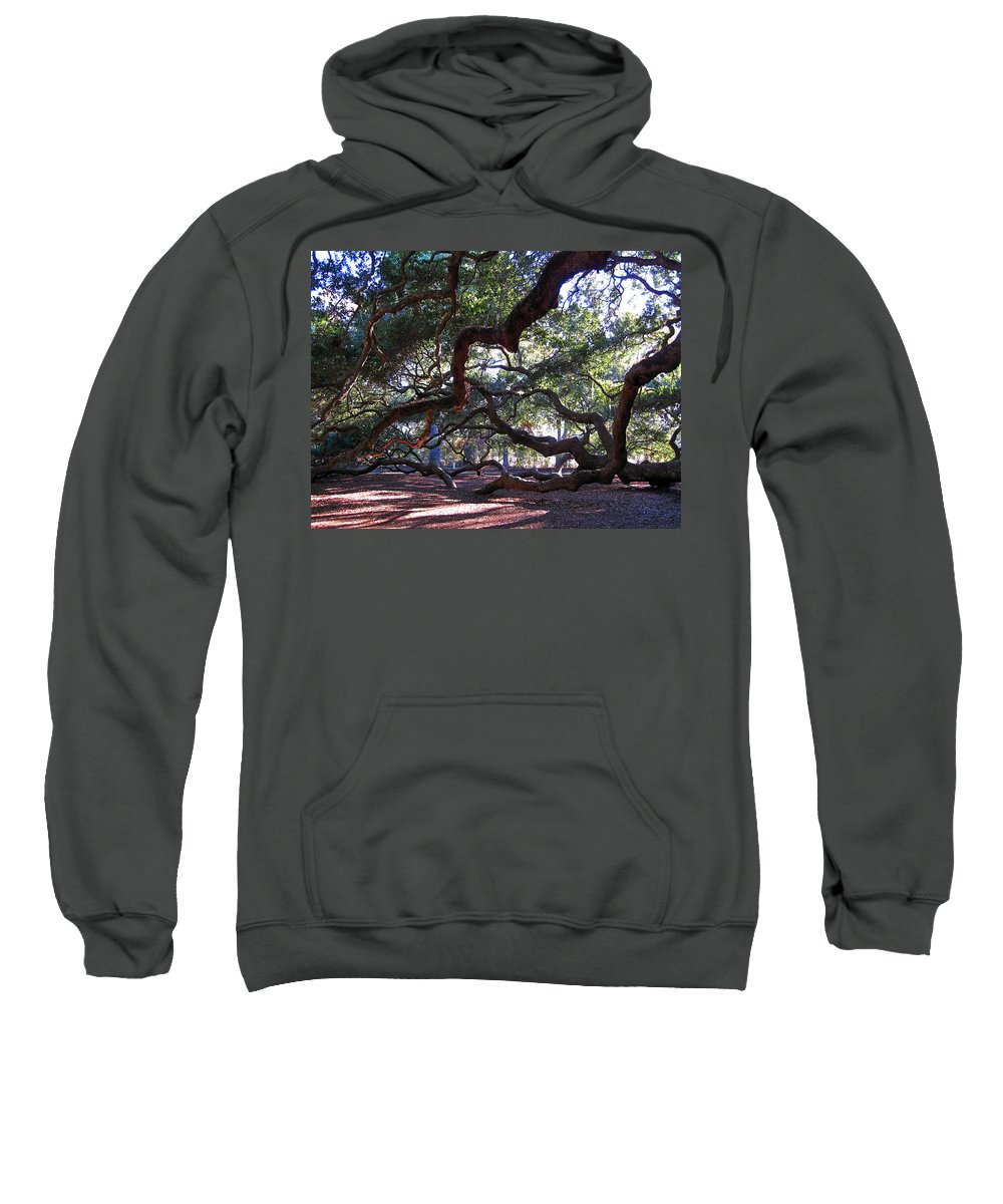 Photography Sweatshirt featuring the photograph Angel Oak Side View by Susanne Van Hulst