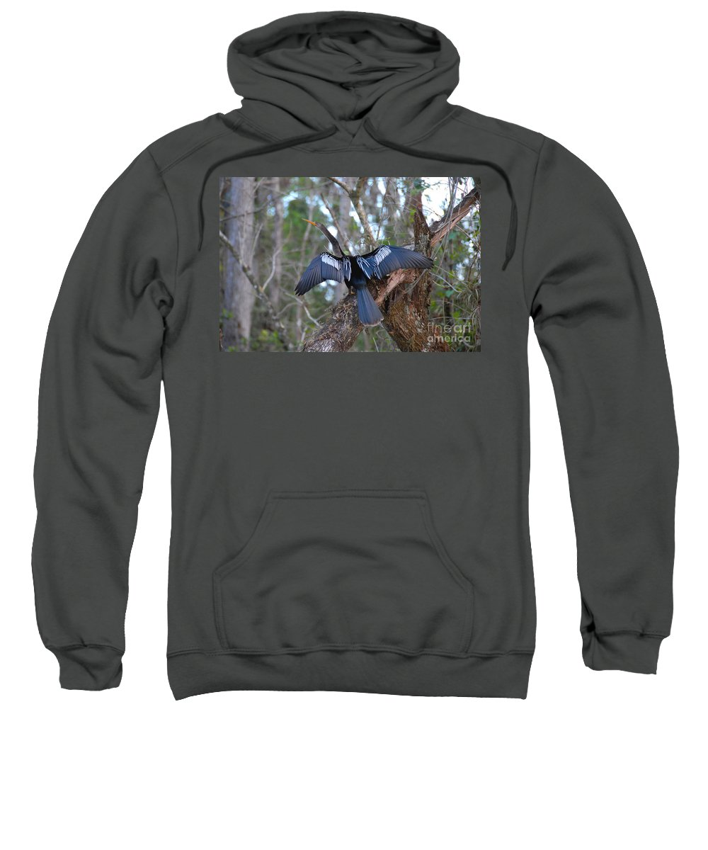 Anhinga Sweatshirt featuring the photograph Anhinga by David Lee Thompson