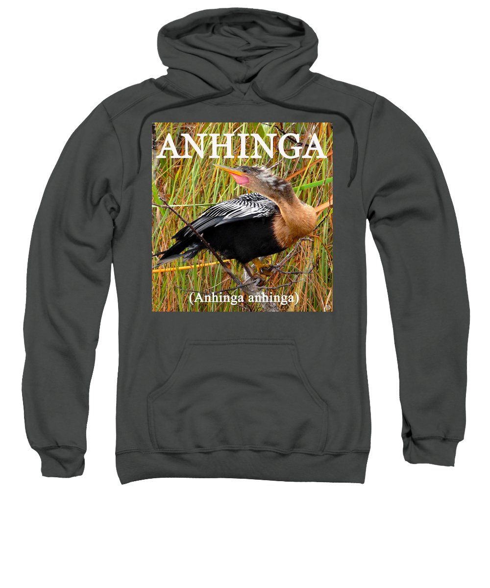 Anhinga Anhinga Sweatshirt featuring the photograph Anhinga The Swimming Bird by David Lee Thompson