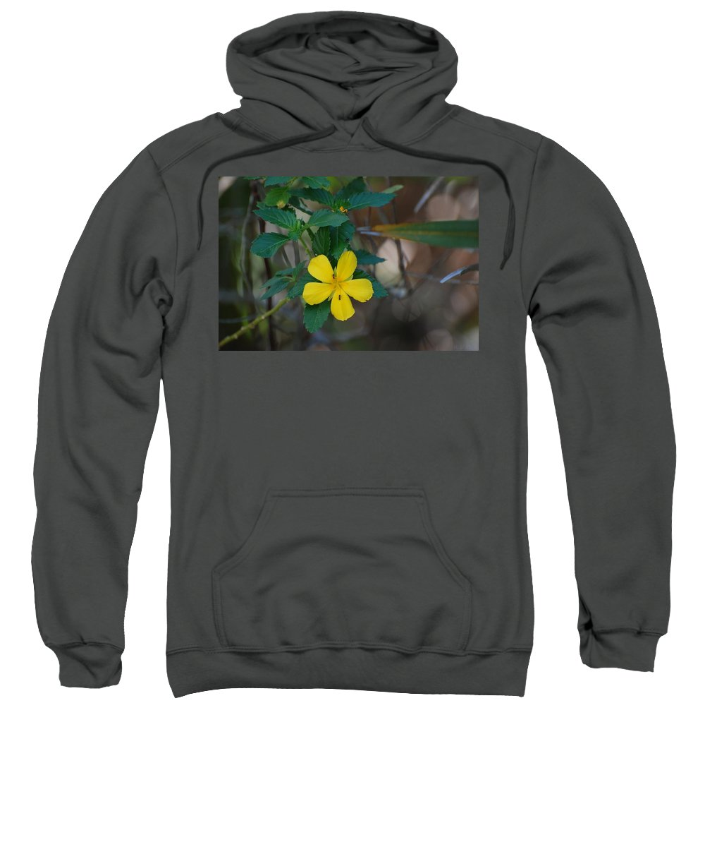 Macro Sweatshirt featuring the photograph Ant Flowers by Rob Hans