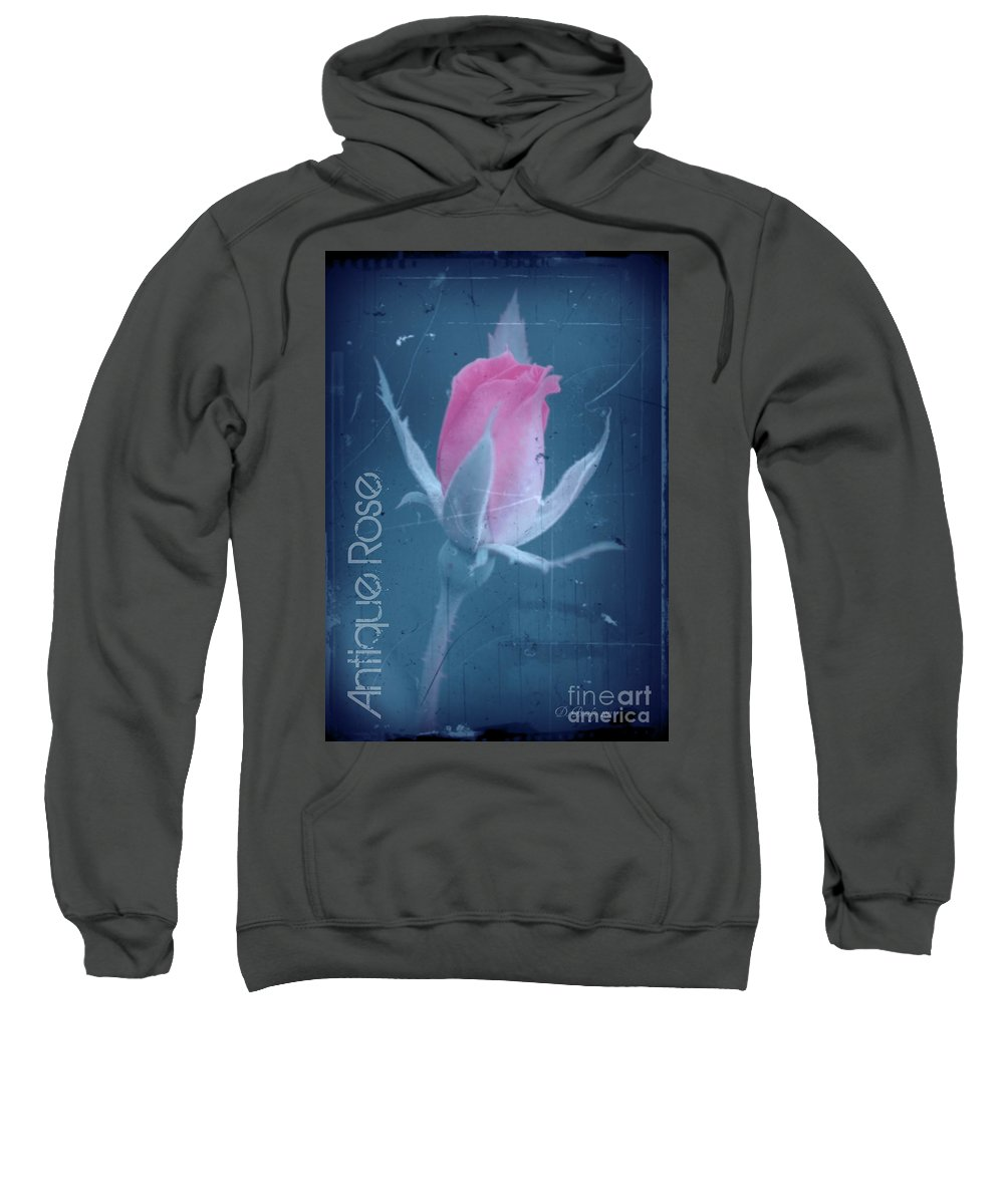 Rose Sweatshirt featuring the photograph Antique Rose 3 by Donna Bentley