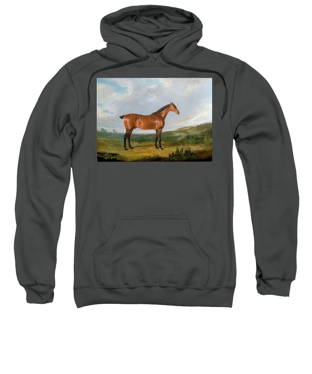 John Frederick Herring Sweatshirt featuring the painting Arabian Horse by MotionAge Designs