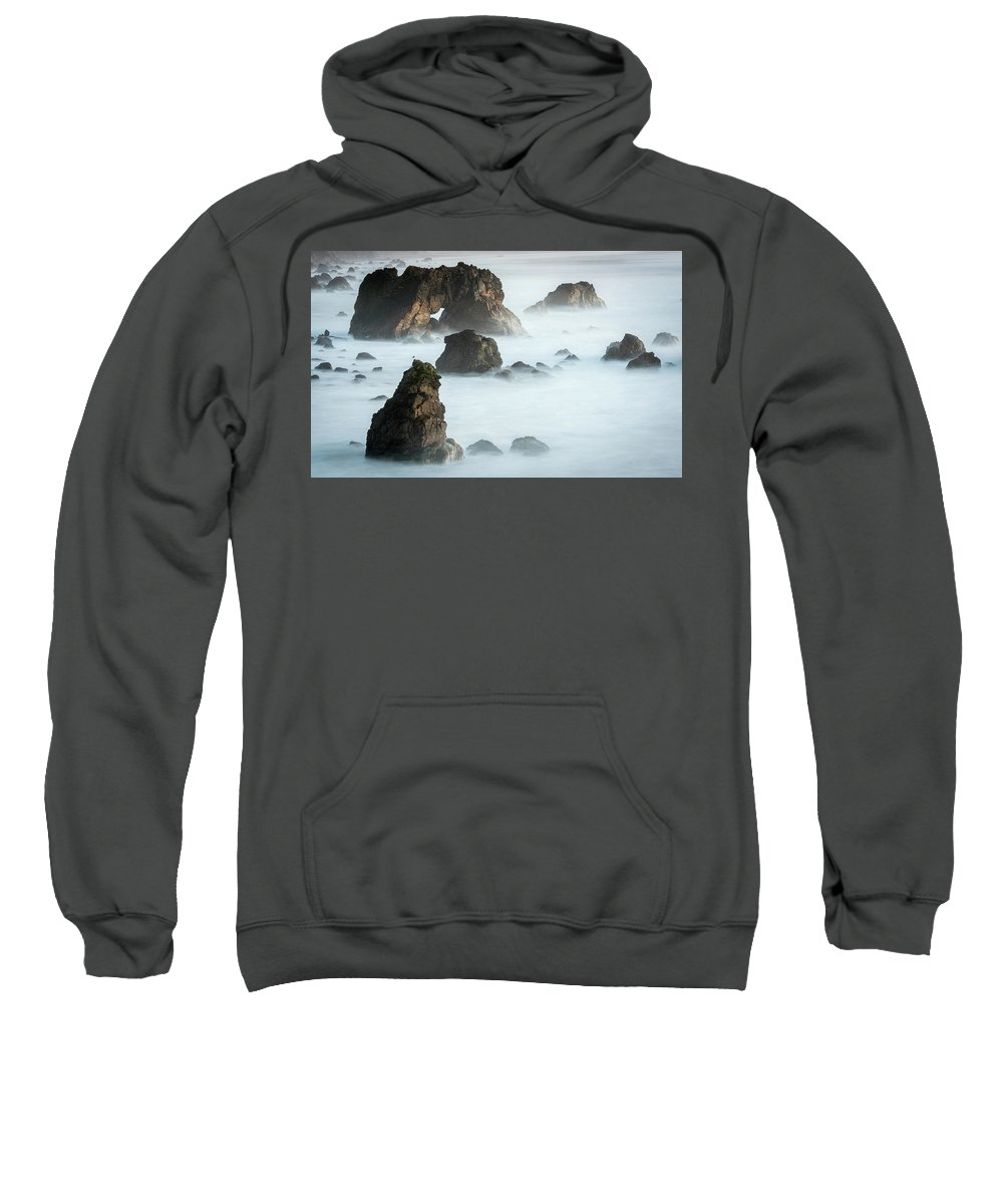 Arched Rock Sweatshirt featuring the photograph Arched Rock Sea Bird by Travis Elder