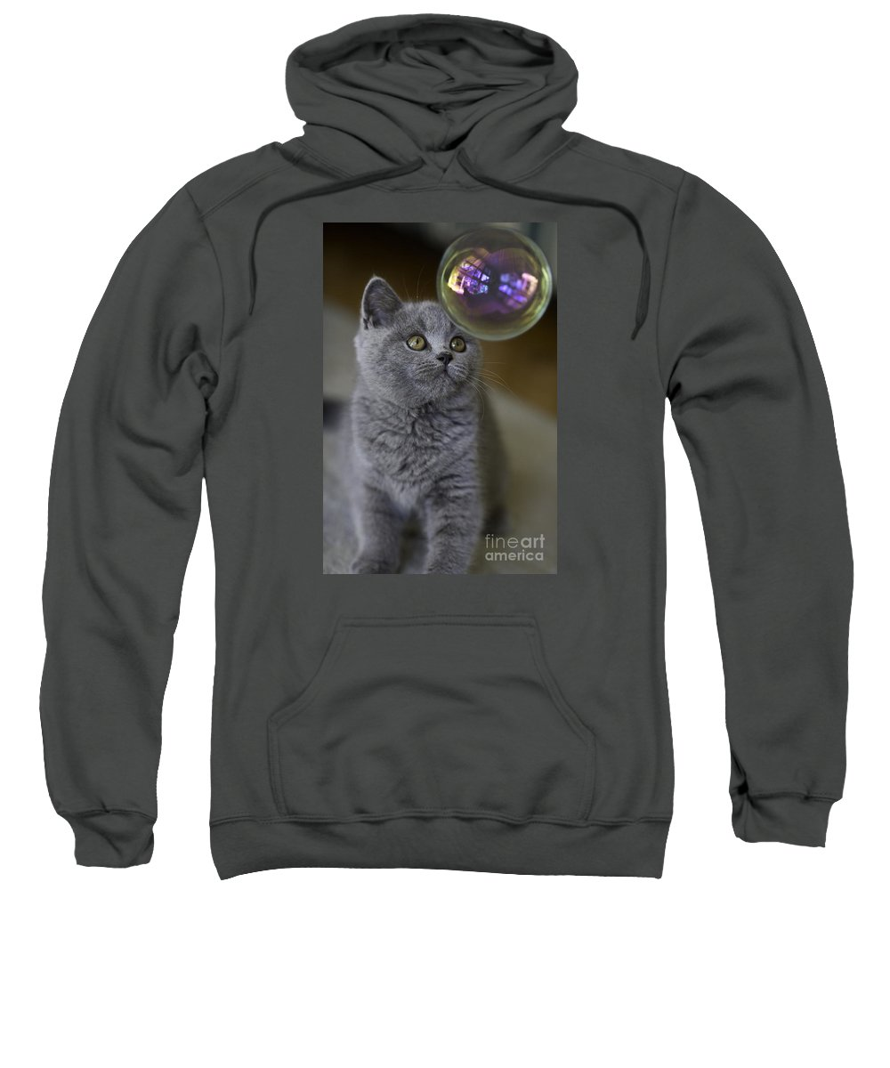 Cat Sweatshirt featuring the photograph Archie With Bubble by Sheila Smart Fine Art Photography
